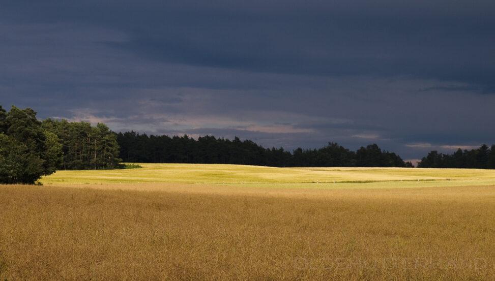 Landschaft bei Bad Berneck