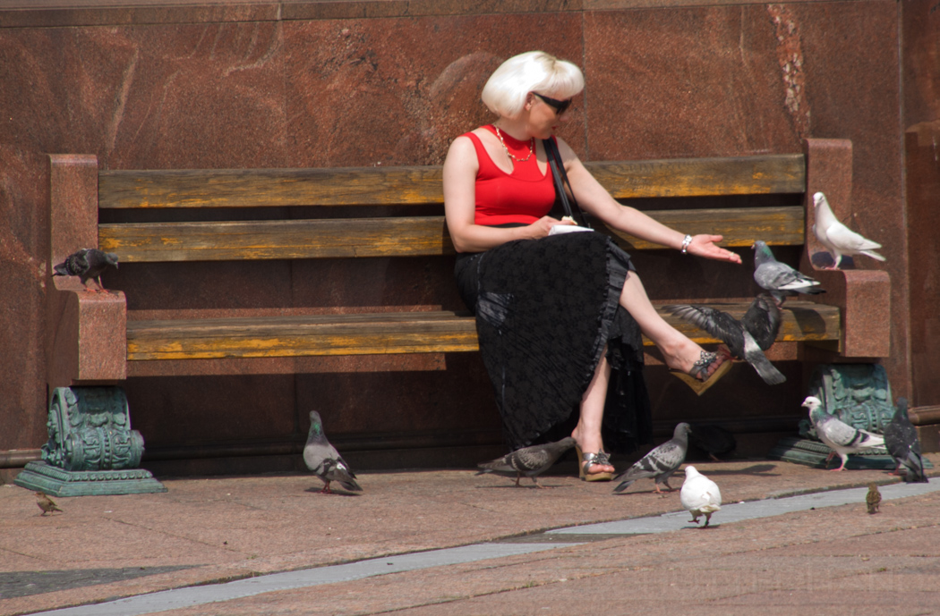 Dame füttert Tauben
