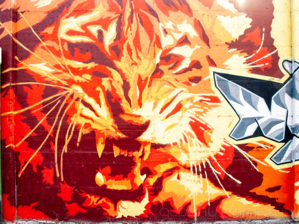 Graffiti Bozen