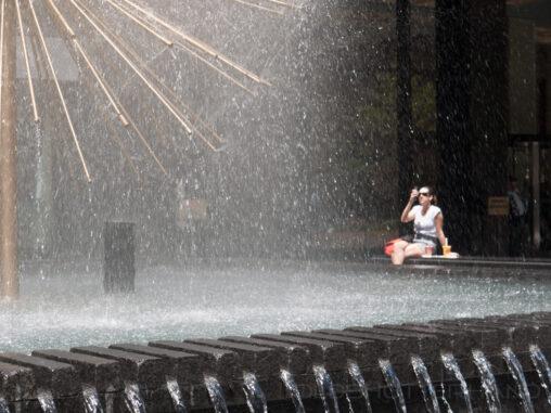 Brunnen City Bank New York