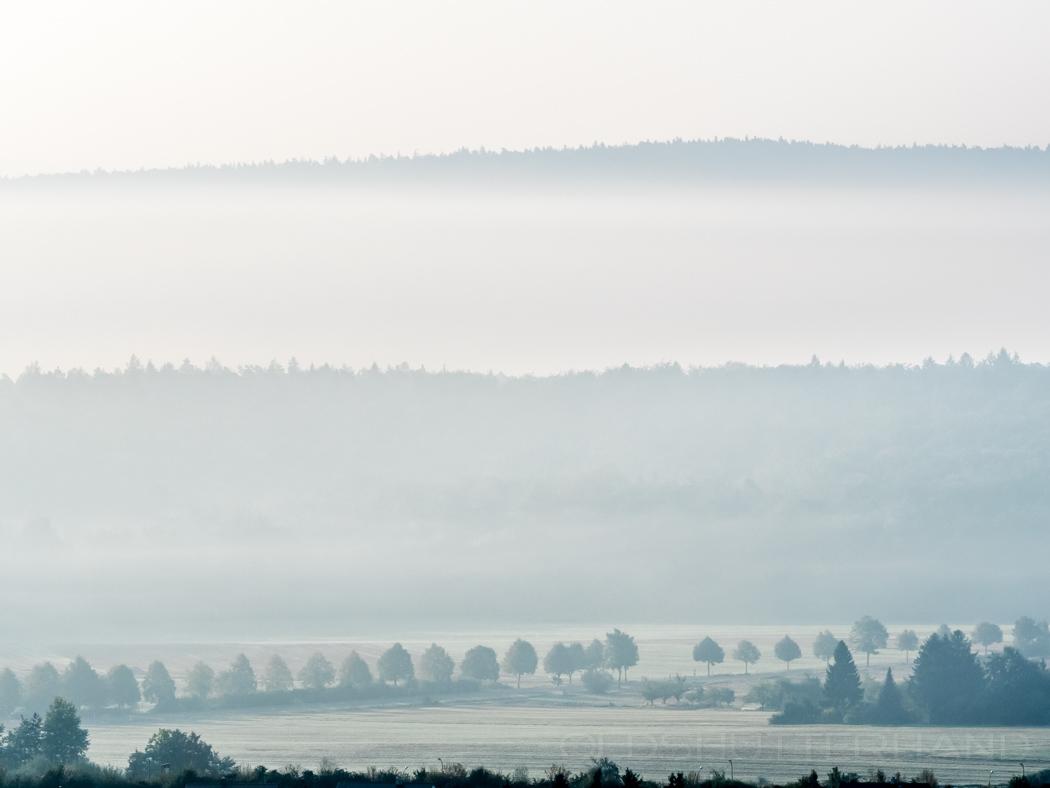 Die Nebelzeit …