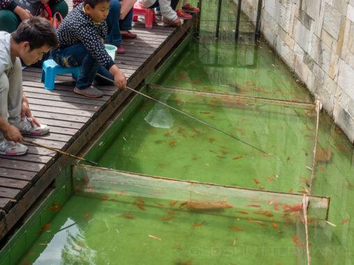 Angler in Schanghai
