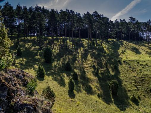Kleinziegenfelder Tal