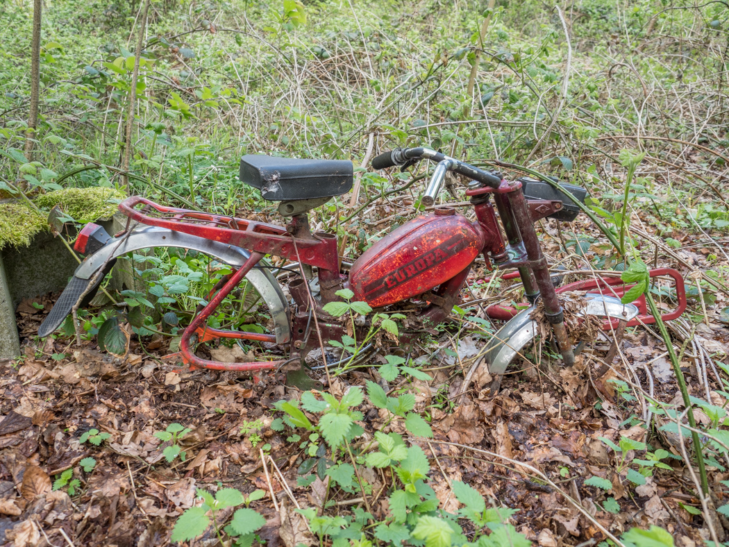 Moped Schrott Bruderwald