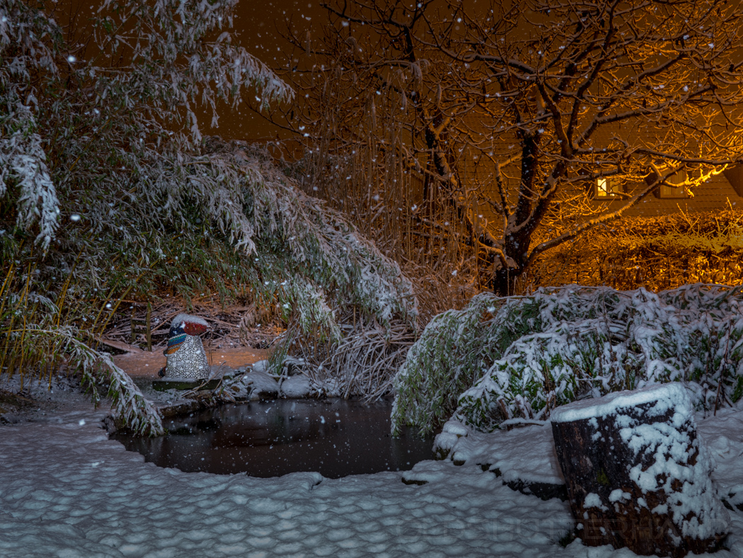 Nächtlicher Schneefall