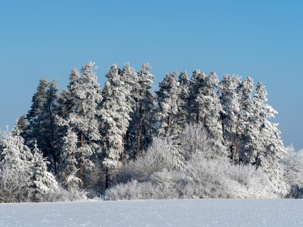 Winterlandschaft bei Ludwag