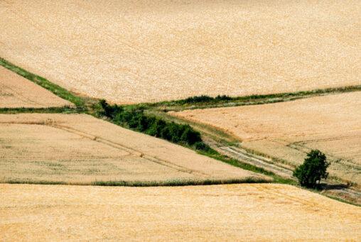 Getreidefelder im Naturpark Haßberge