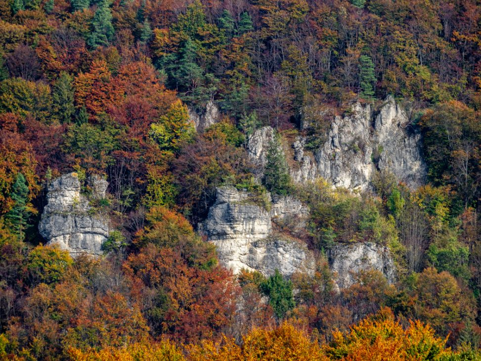 Muggendorfer Felsen mit Herbstlaub